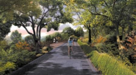 西溪谷沿山慢行道效果图-杭州西湖区正在计划建国际标准的山地自行高清图片